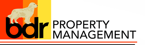 BDR Property Management